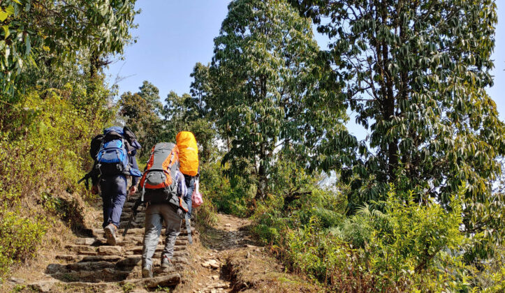 Guided Mardi Himal Trekking